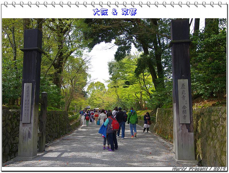 2015大阪&京都賞櫻自由行(4)