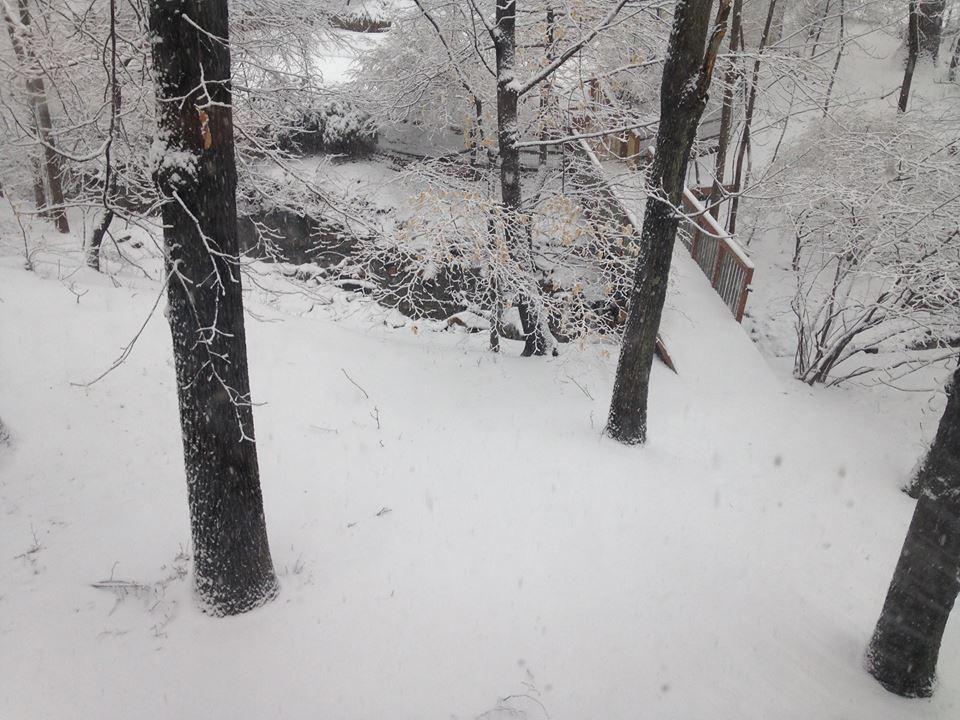 snow03052015-vi.jpg