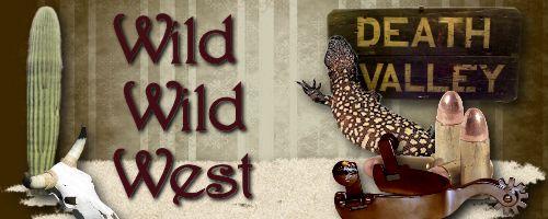 Wild, Wild West Header