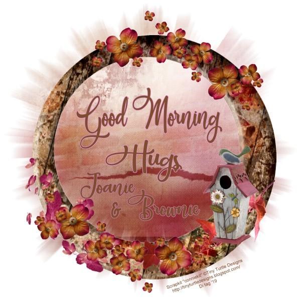 GOOD MORNING/AFTERNOON/NIGHT 2v2E7sLnnxAhe3S