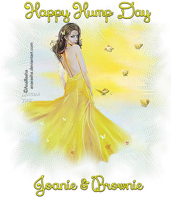 GOOD MORNING/AFTERNOON/NIGHT - Page 4 2v2EKS2tGxAhe3S