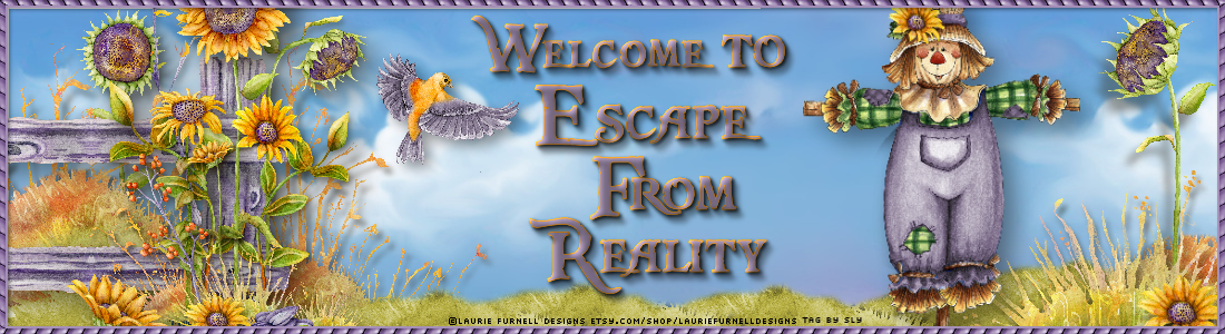 Welcome to Escape From Reality!